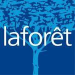 LAFORET - EPERNON